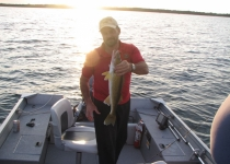 walleye marty